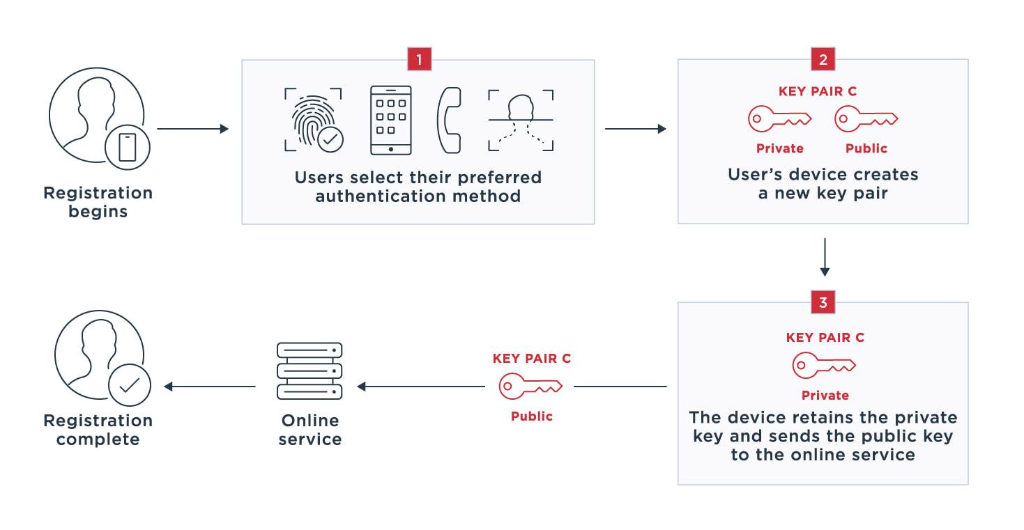 Diagram outlining how the FIDO universal authentication framework (UAF) works.