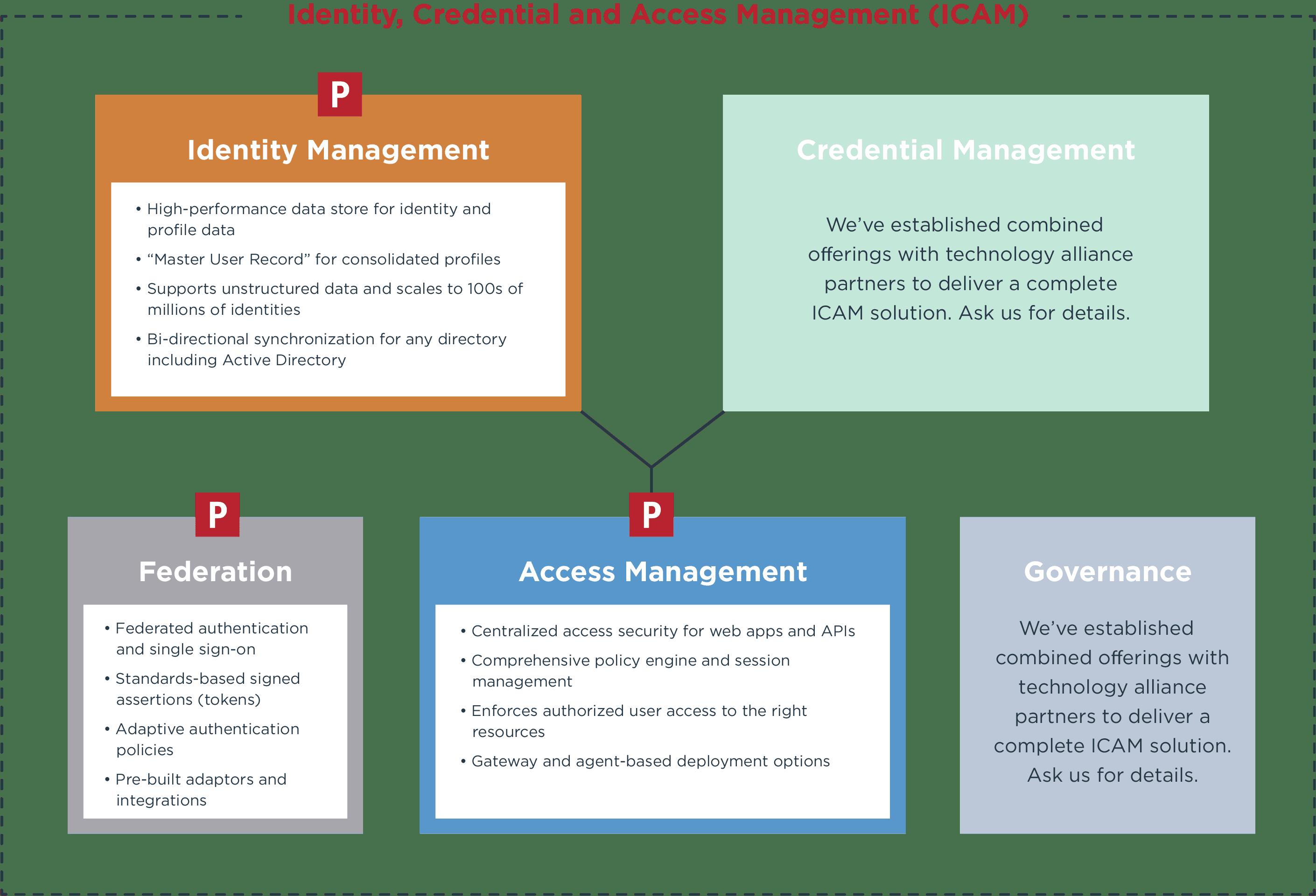 ICAM diagram