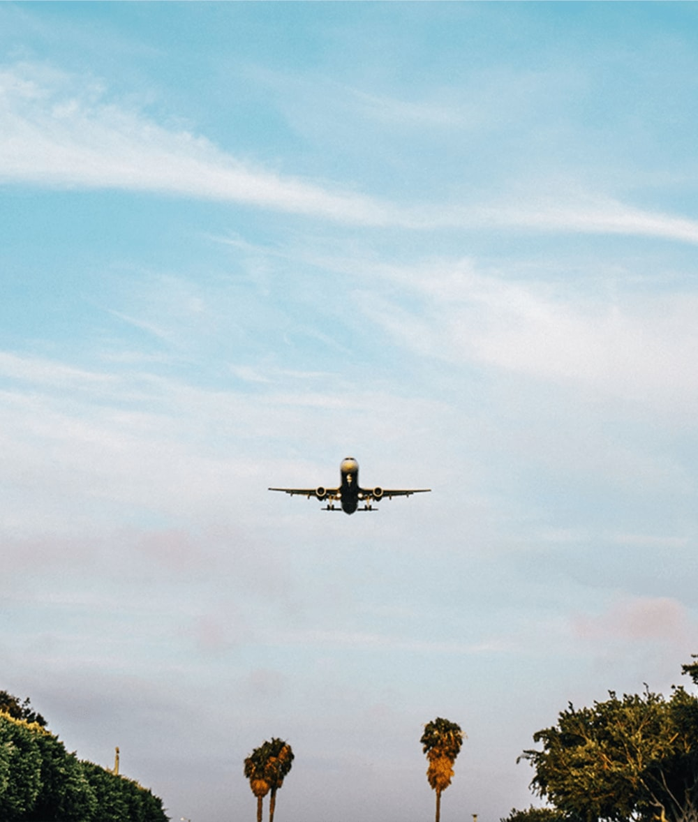 Image of plane taking off over palm trees