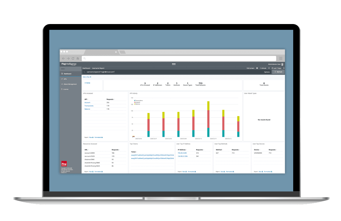 Built-in dashboards and reporting centralize the monitoring of API activity